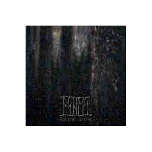 Ashes - Funeral Forest Image